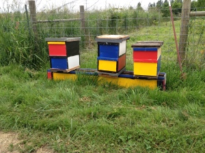 David, my bee mentor, dropped off three of his hives to take advantage of our abundant bee forage. He likes Mondrian.