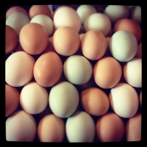 """April is for Eggs, and we have lots! Egg-laying productivity is directly related to day length, so as the days increase the laying hen's pituitary gland says """"it's time to make babies!"""" Unfortunately, as the day length decreases toward the end of summer, so will the eggs disappear, so get them while they're here!"""