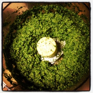 Bright green and delicious! Pea Shoot Pesto!