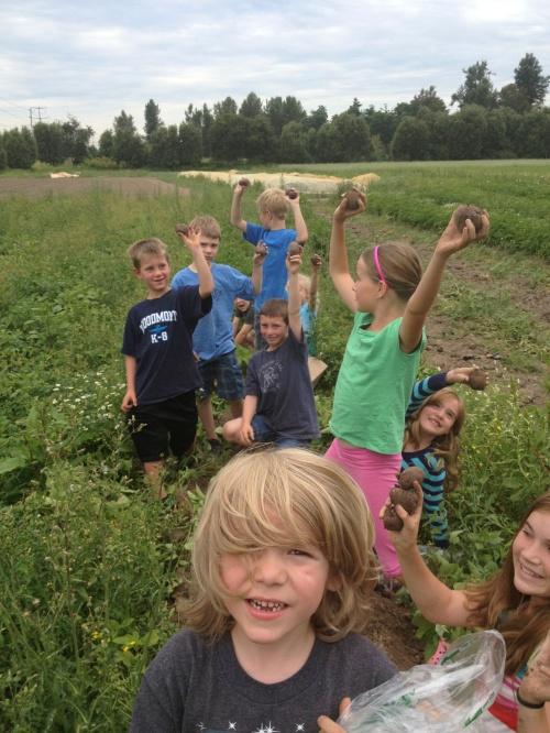 Farm Kids digging digging potatoes!