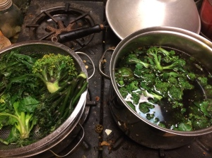 Before freezing many vegetables, they need to be blanched to kill enzymes that could transform food while frozen. I just drop handfuls into boiling water, remove when starting to get tender, drain in a colander. Then I rinse in cold water and pack into bags.