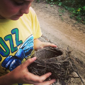 Cosmo was amazed to discover the size and construction of this abandoned Robins' nest. The mud is smooth and strong. He's become an avid birder this summer.