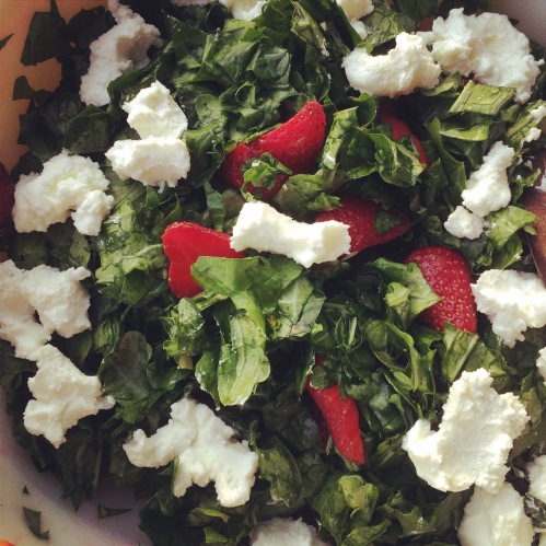 I'm not usually a raw kale person, but our kale is SOOO tender right now, and I'm needing a break from lettuce, so I found this deliciousness. Recipe below. I admit, I scarfed down half of the batch.