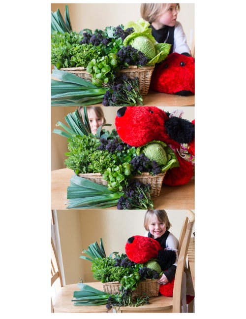 Our amazing first week of Spring CSA! Someone was very excited to dive in!
